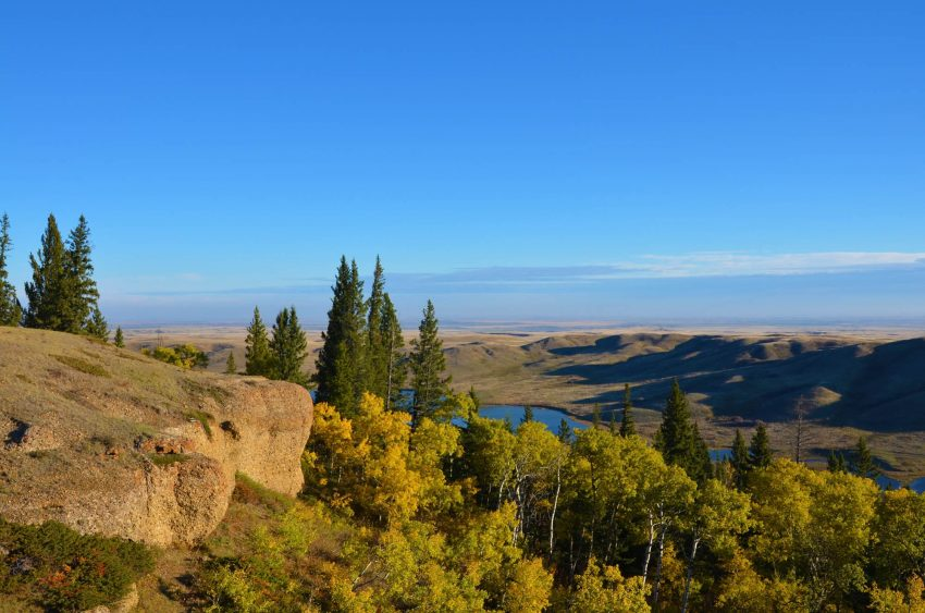 View of the Conglomerate Cliffs in Cypress Hills